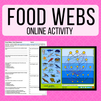 food webs webquest