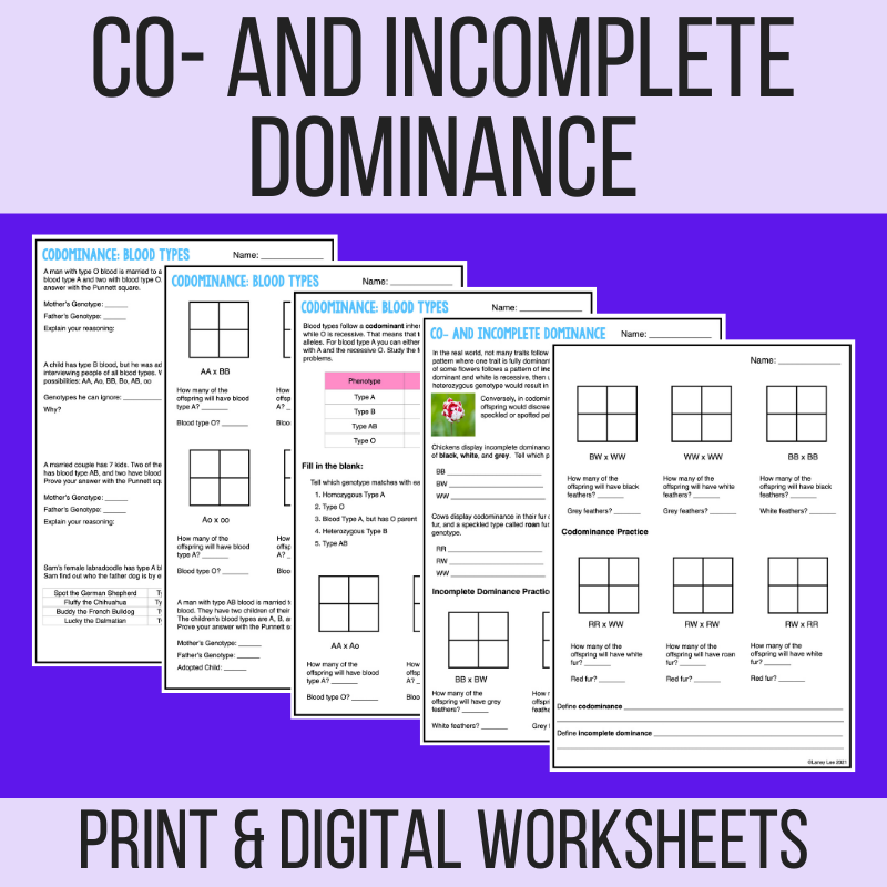 incomplete dominance vs. codominance worksheet