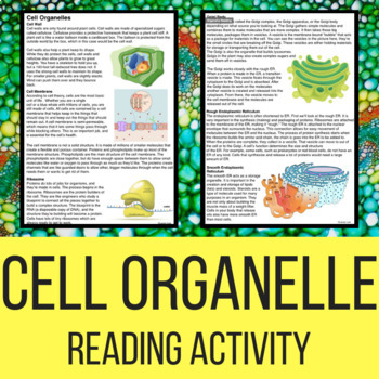 organelle reading