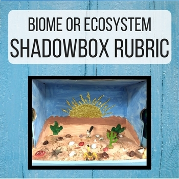biome ecosystem shadowbox