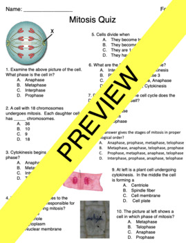mitosis cell cycle quiz