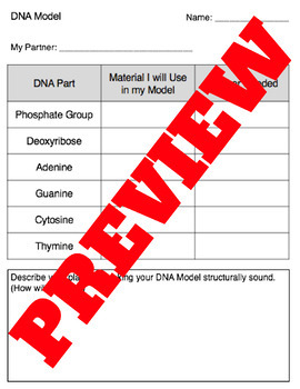 Dna Model project