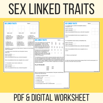 Sex Linked Traits Worksheet - PDF & Digital - Laney Lee