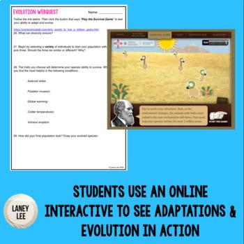 evolution webquest
