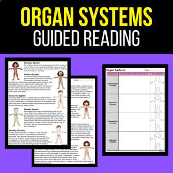 organ systems worksheet