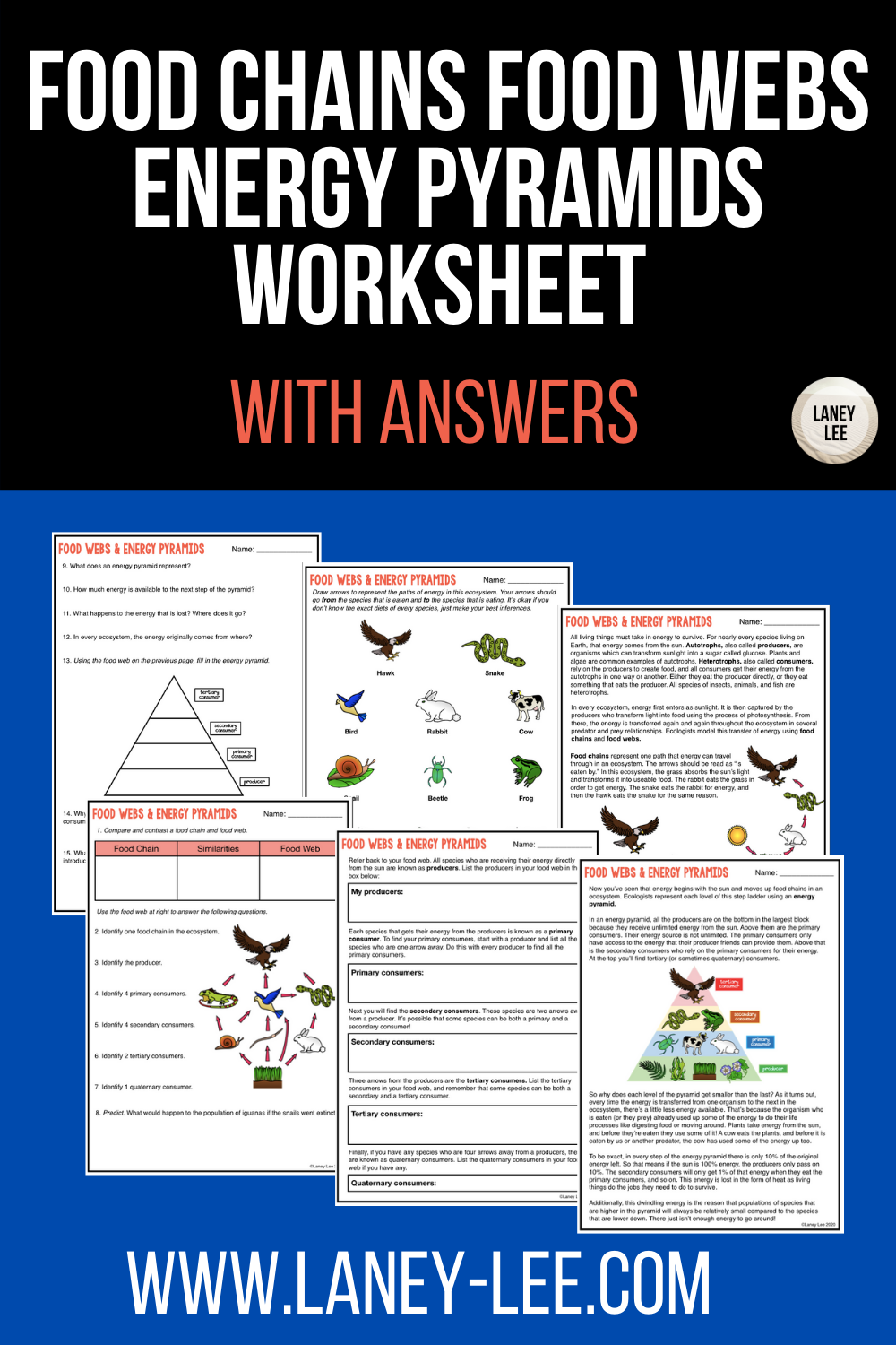 Food Chains and Food Webs Worksheet with Answers - Laney Lee