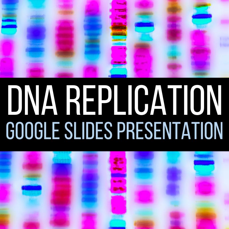 dna replication presentation google slides