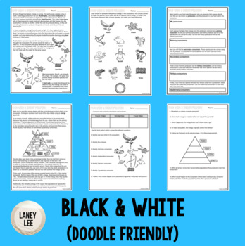 food chains and food webs energy pyramid worksheet answers