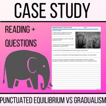 punctuated equilibrium gradualism