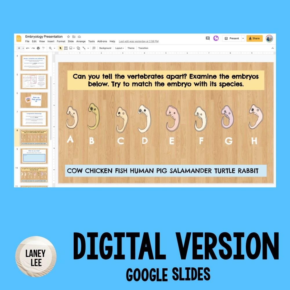 comparative embryology lesson google slides