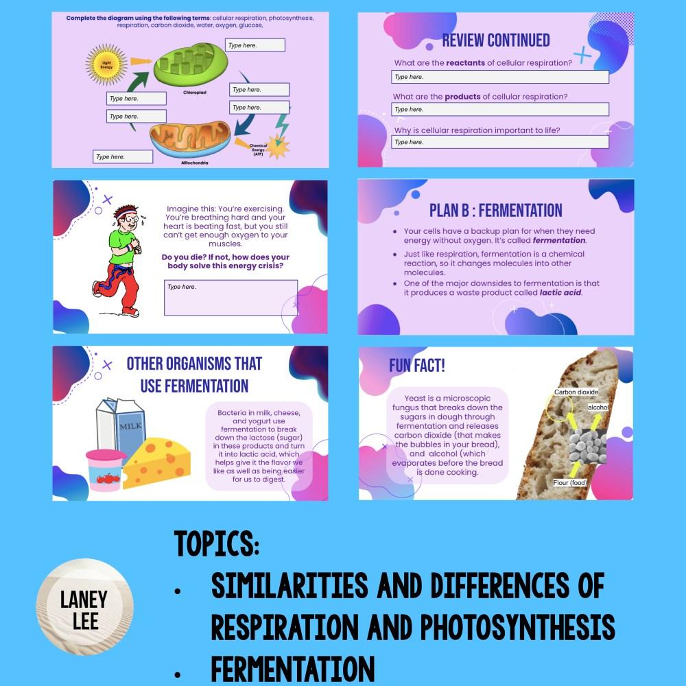 cellular respiration google slides presentation