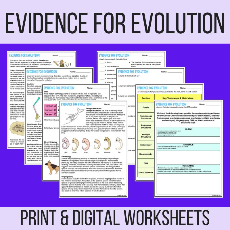 evidence for evolution pdf worksheet answer key